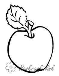 Coloring Apples  Sweet, apple, green, coloring pages for children