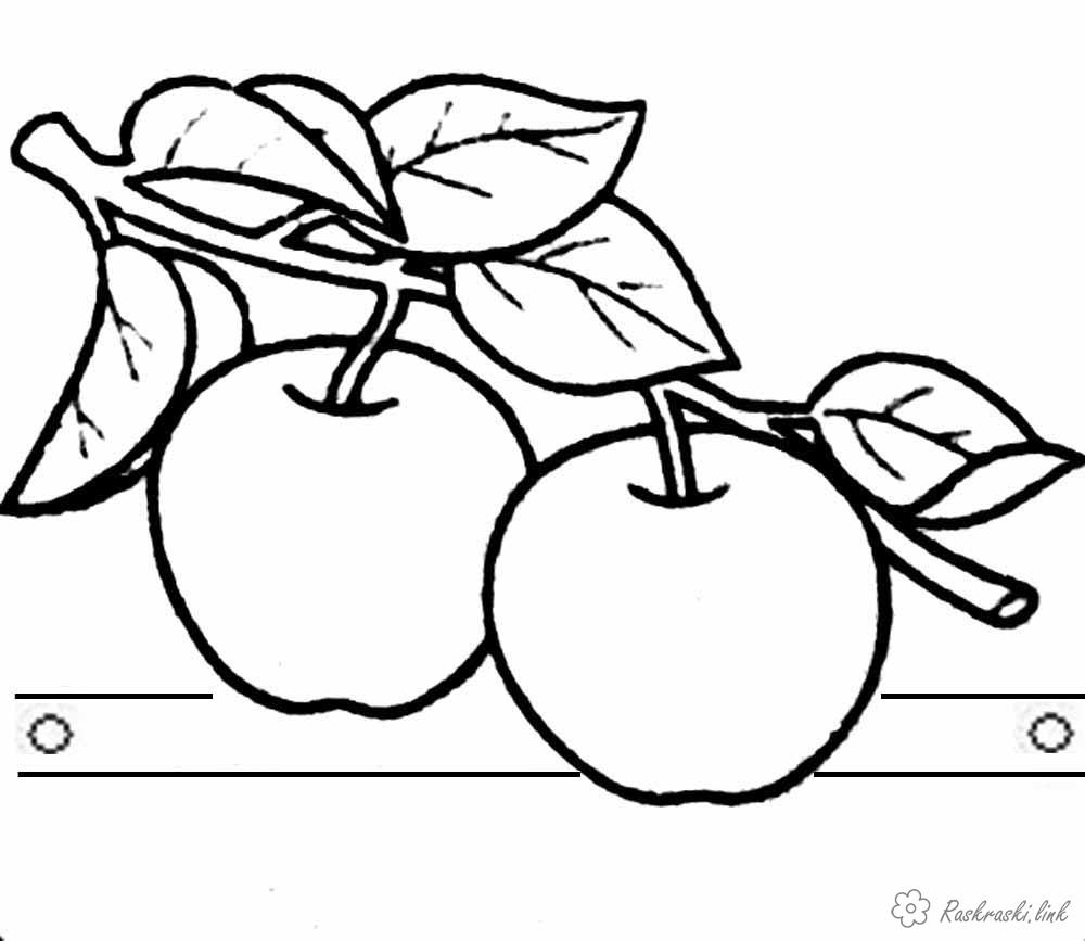 Coloring Apples  Apples, regiment, beautiful, ripe, coloring pages for kids