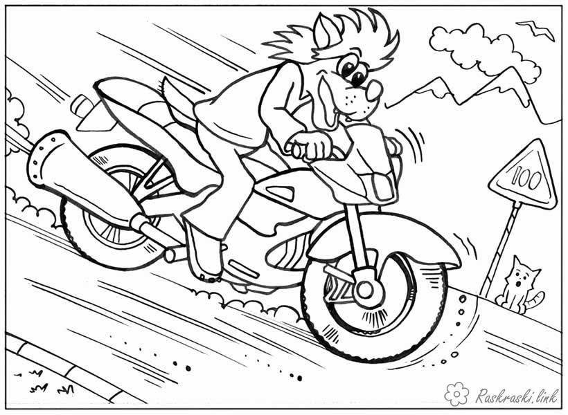 Coloring Wait for it! coloring pages Well, wait a wolf, motorcycle