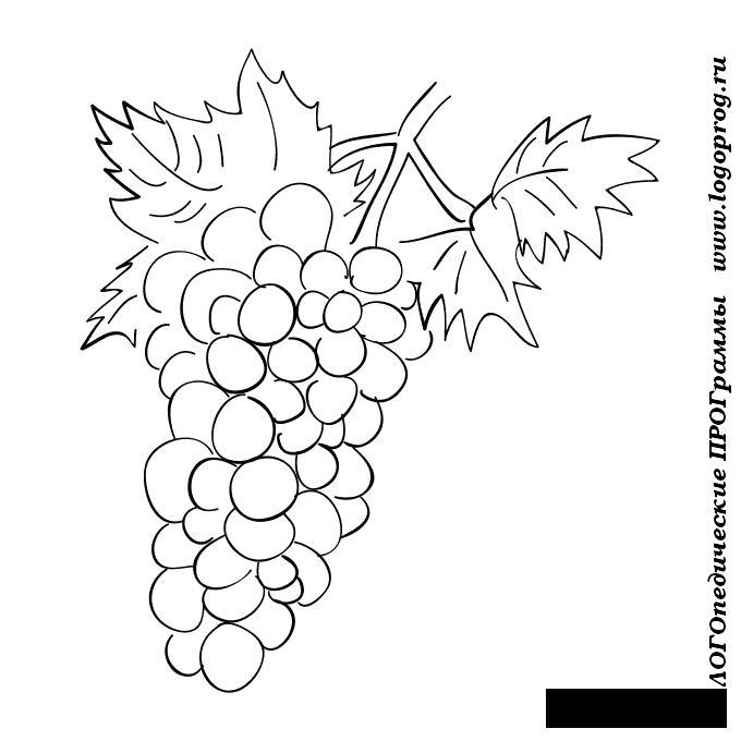 Розмальовки Ягоди ягоди, розфарбування, груздь винограду, смачний