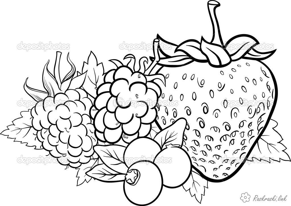 Розмальовки ягід Красиві, ягоди, безліч, на світі, розмальовки