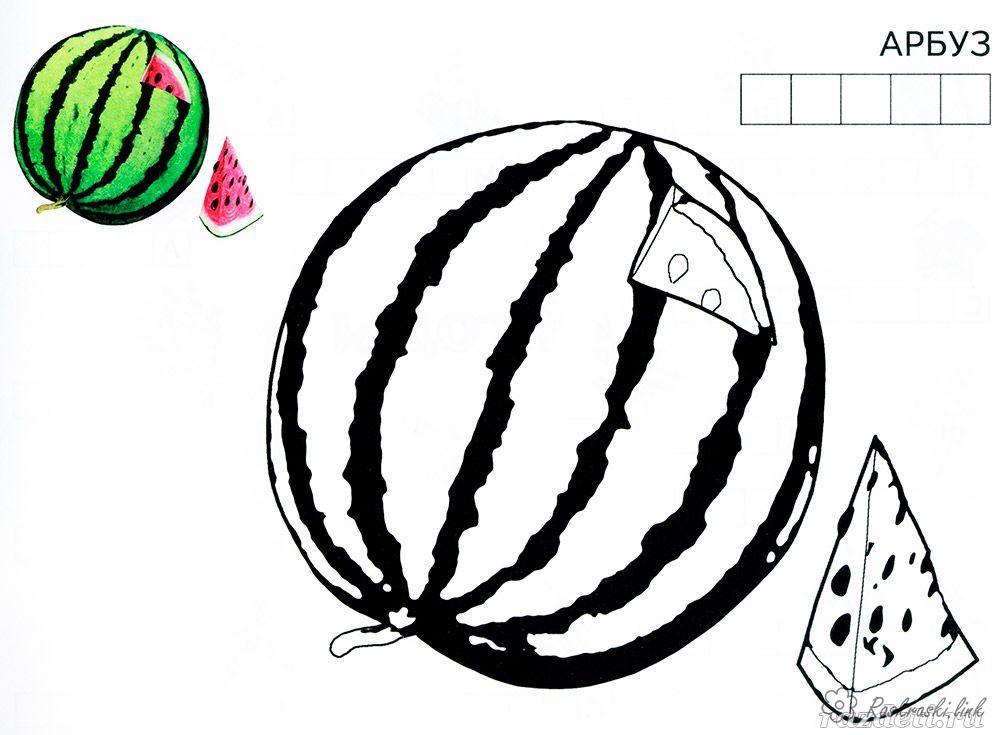 Розмальовки Ягоди Смугастий, кавун, солодкий, з кісточками, розфарбування