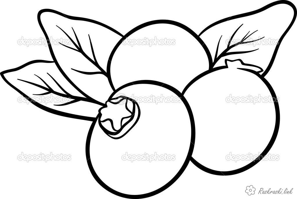 Розмальовки стиглі Три ягідки, стиглі, смачні, розфарбування, соковиті