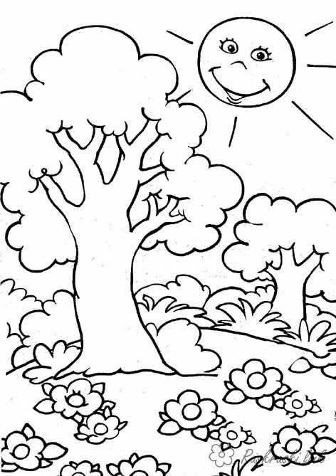 Розмальовки сонечко розмальовка дерево, сонечко, галявина, лісок, кущик