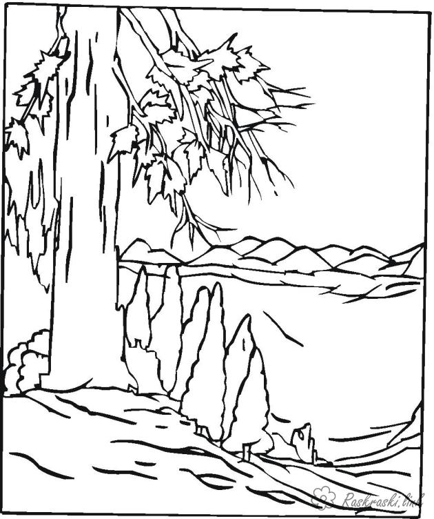 Coloring Forest and landscape coloring pages the forest, slope, big tree, mountain