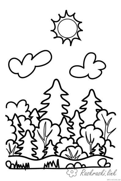 Coloring Forest and landscape coloring pages forest, clouds, spruce, bush, sun