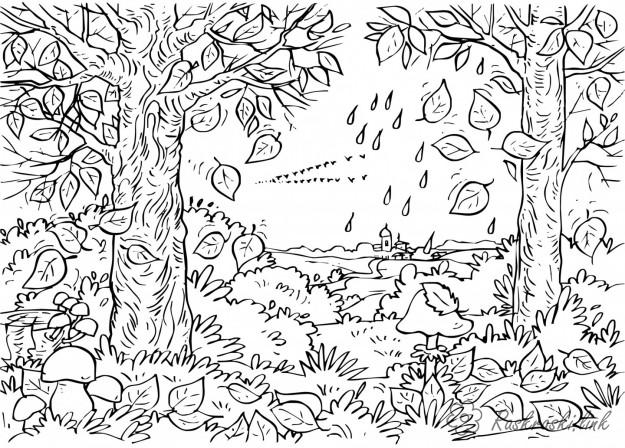 Coloring Forest and landscape coloring pages autumn landscape, birds fly, fall leaves