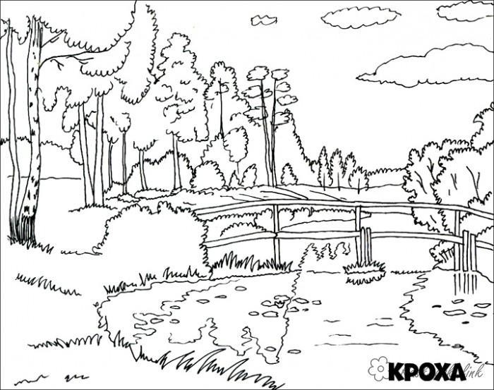 Coloring bridge coloring pages summer landscape birch River bridge