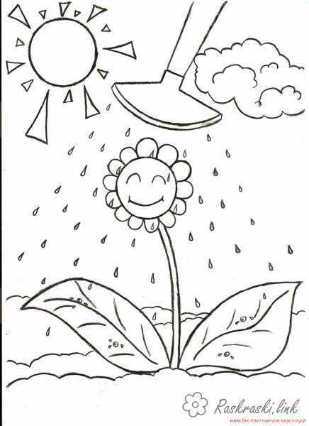 Coloring summer Flower watering coloring pages summer sun clouds