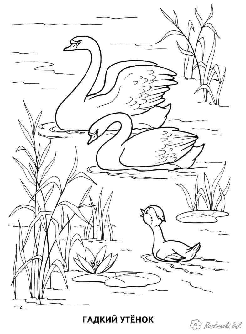 Coloring coloring pages books for children tales coloring pages gallop ugly duckling swan duckling
