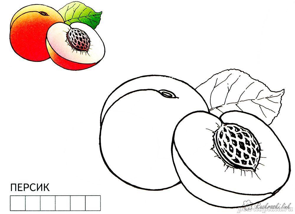 Розмальовки Фрукти Апельсин, лимон, груша, персик, слива, розфарбування, стиглий, соковитий, з кісточкою
