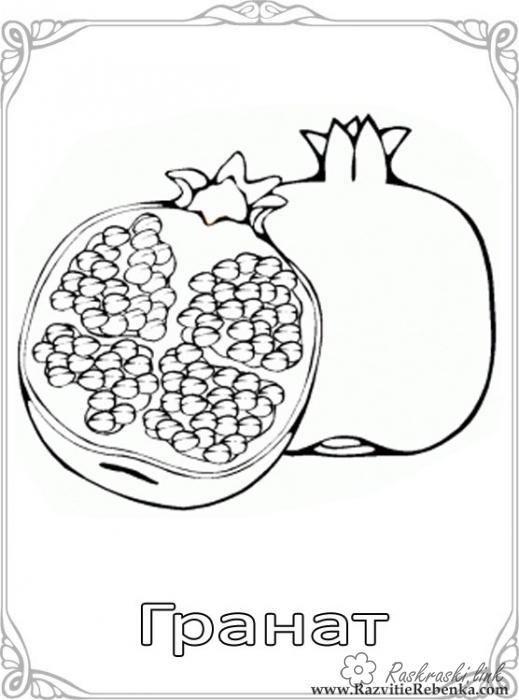 Розмальовки Фрукти Стиглий, корисний, дуже смачний, гранат, розфарбування