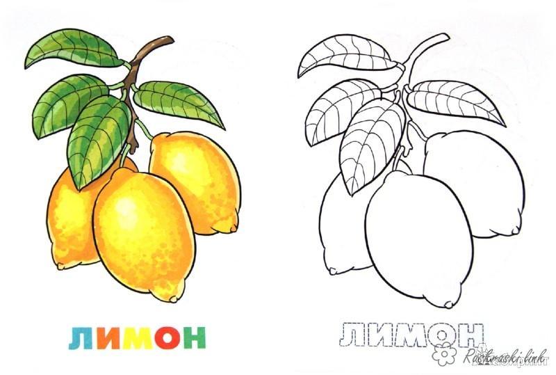 Розмальовки Фрукти Стиглий, жовтий, лимон, кислий, розфарбування