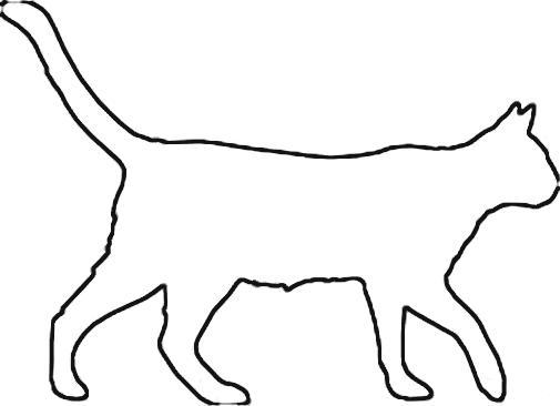 Раскраски кота  контур кота кот идет
