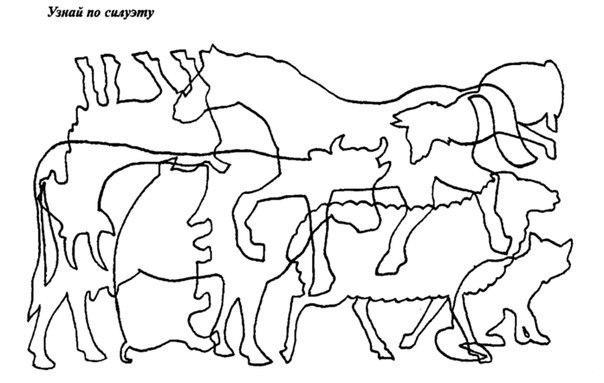 Раскраски найди найди животных по контурам