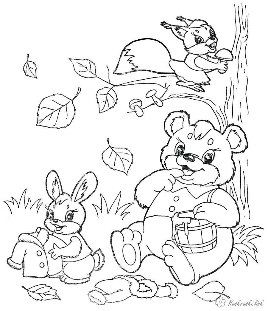 Раскраски дикие Раскраска животные, природа, дикие животные, лесные животные, раскраска медвежонок, раскраска белочка, раскраска зайчик, мед, грибы