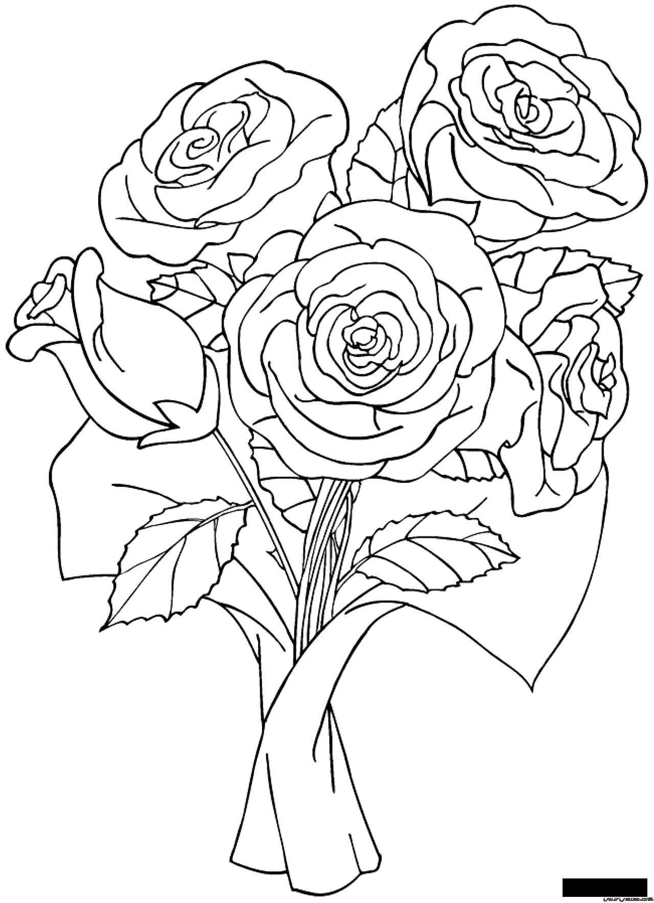 розы Раскраски распечатать бесплатно.