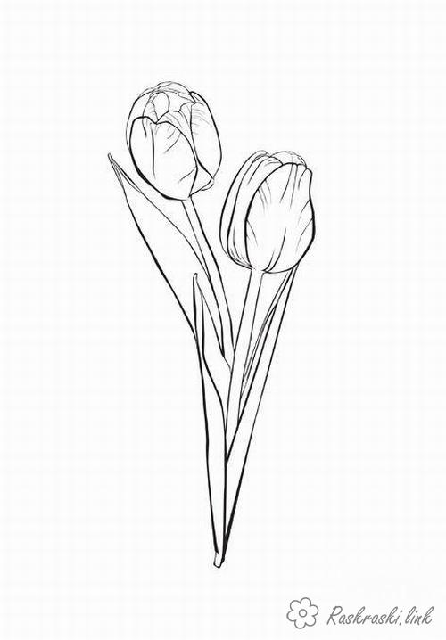 Розмальовки Весна розмальовки з тюльпанами