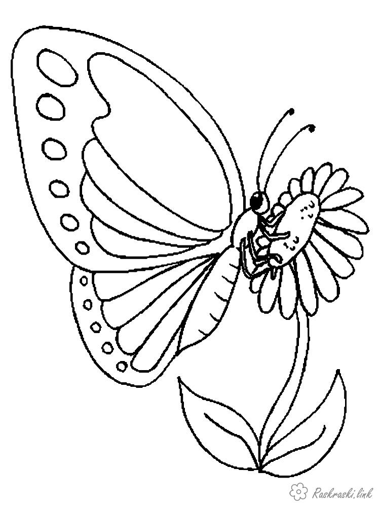 Coloring для Children coloring pages insects, butterfly on a flower