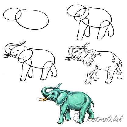 Coloring How to draw draw Elephant