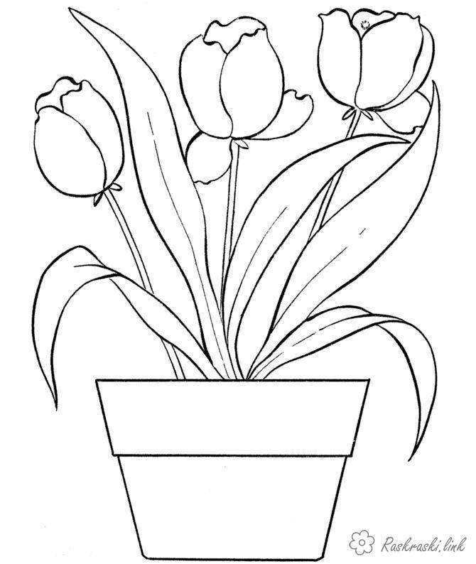 Розмальовки Розфарбувати квіти розмальовки, дитячі розмальовки, розфарбування перші весняні квіти