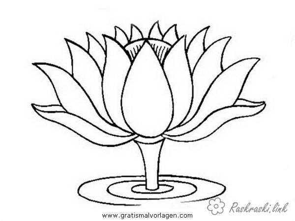 Розмальовки раскраска раскраска, цветок, раскраска болото