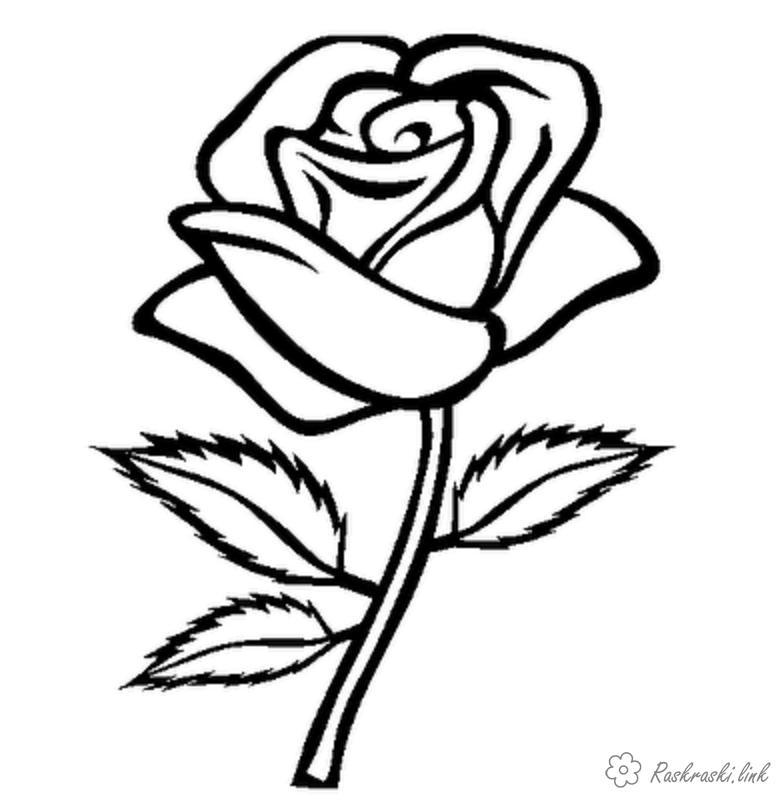 Розмальовки квітка розмальовки, чорно-біла розфарбування, дитячі розмальовки