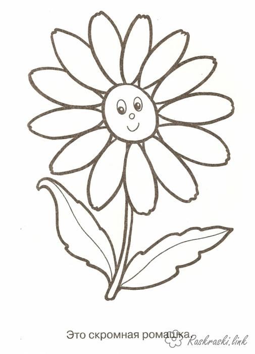 Розмальовки раскраска раскраски, детские раскраски, ромашка