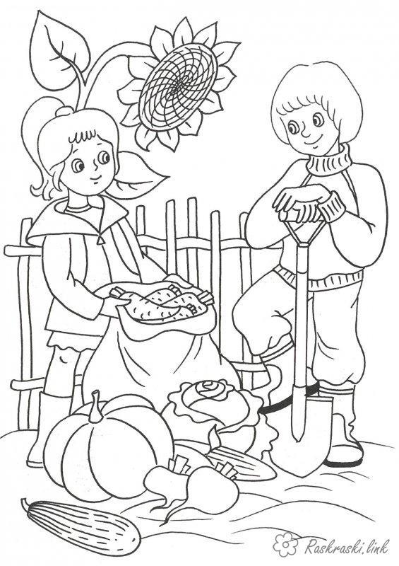 Розмальовки Осінь розфарбування діти підгортають город збирають урожай
