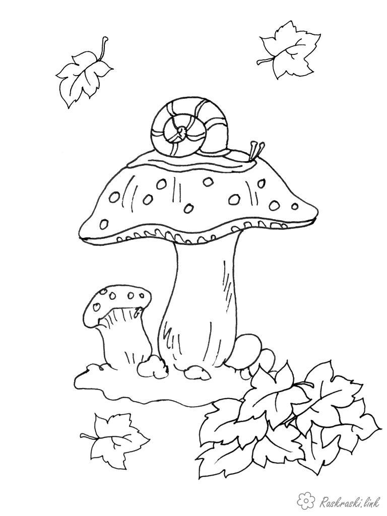 Розмальовки осінь розфарбування, гриби, осінь, гусениця