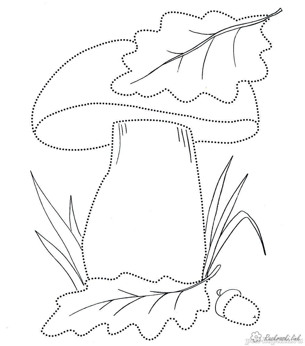 Розмальовки осінь розфарбування гриб грибок пелюстка листя трава