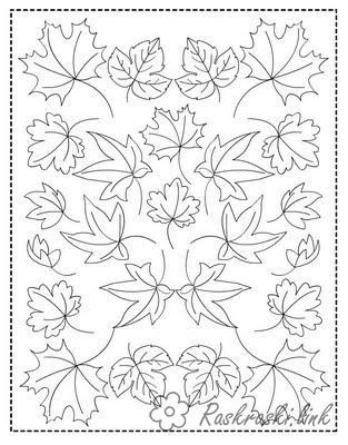 Розмальовки Осінь розмальовки ліс, листя