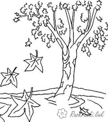 Розмальовки Осінь