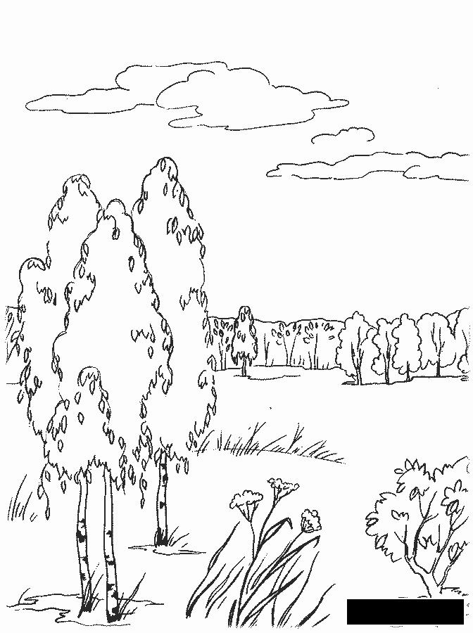 Розмальовки Осінь  дитячі розмальовки, розмальовки, осінь, ліс