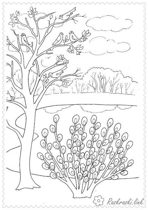 Раскраски озеро раскраски для детей, природа, отдых на природе, озеро, дерево, лес