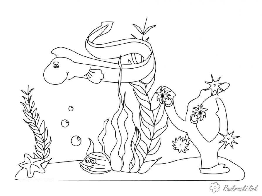 Розмальовки Підводний світ світ під водою розфарбування угрь водорості равлик морська зірка