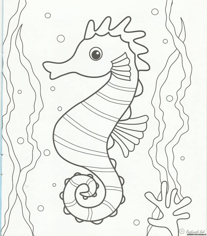 Розмальовки Підводний світ морська конячка вода океан очі коник дивиться