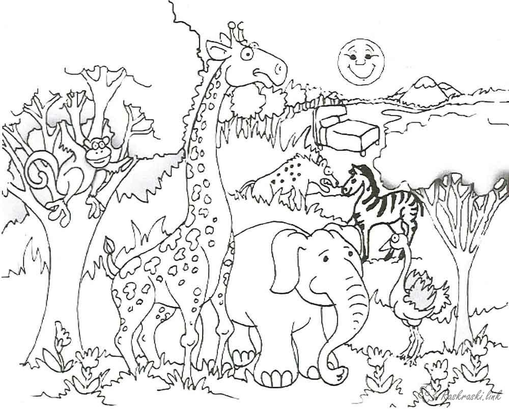 Coloring Africa coloring pages books for children, animals, Africa