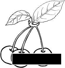 Раскраски вишня Детская раскраска вишня,  черешня