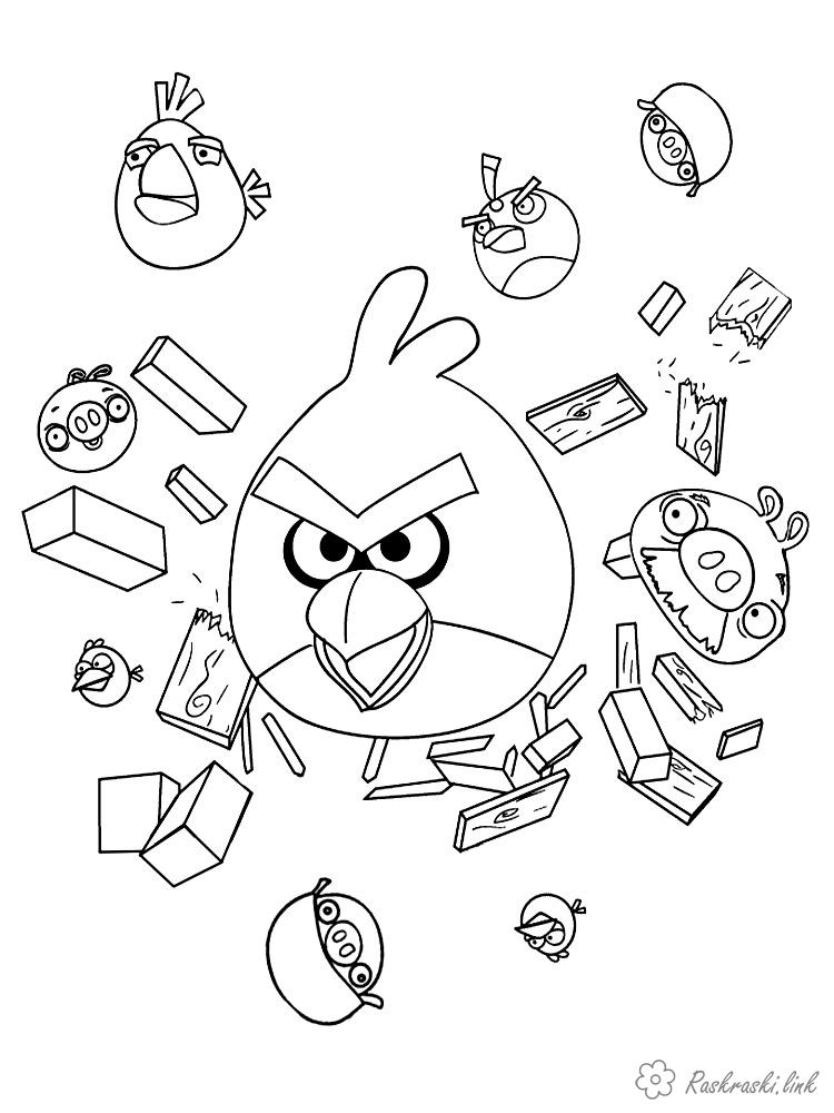 Coloring Angry Birds Angry bird broke the barrier and flies into pieces