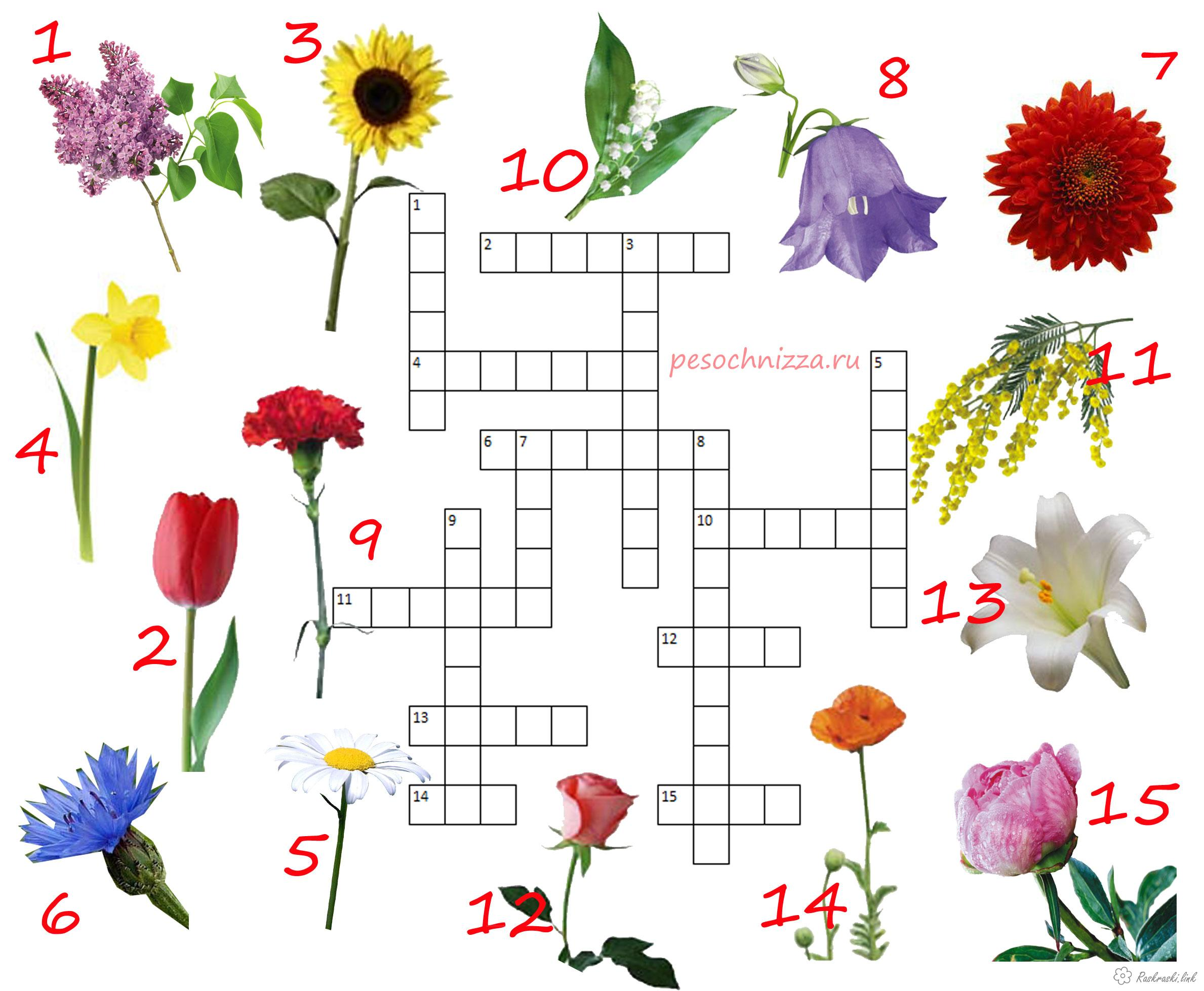 Coloring Educational Crosswords for children, download, print, free, free