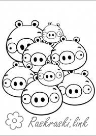 Coloring Angry Birds Lots of green pigs from Angry Birds coloring pages angriberd