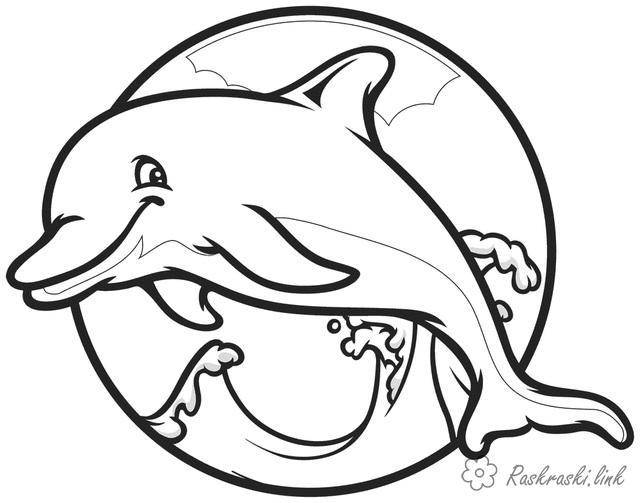 Розмальовки Підводний світ Підводний світ, розфарбування дельфін