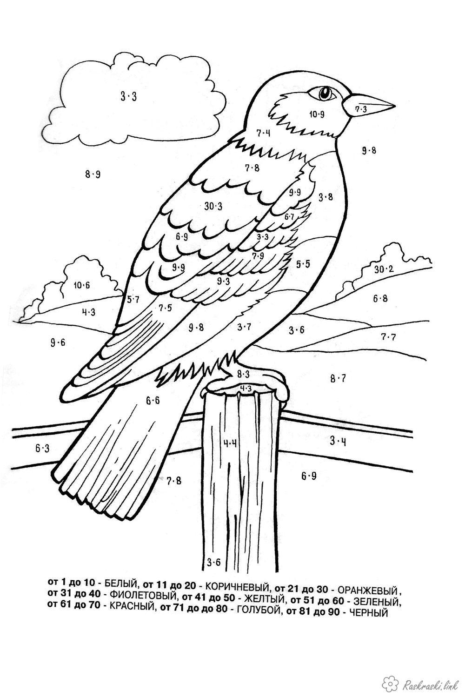 Розмальовки Розмальовки за номерами розмальовки для дітей, розмальовки за номерами, птиця