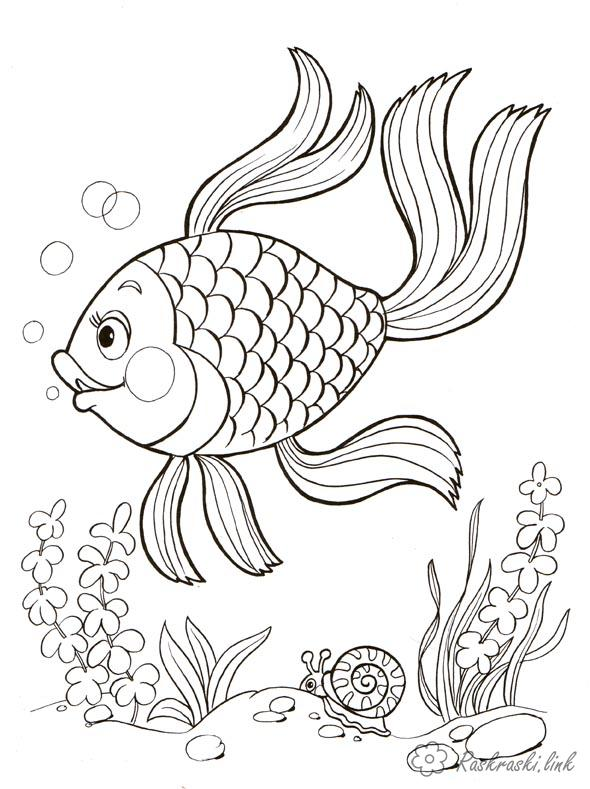 Coloring world The underwater world, fish, seaweed, snail