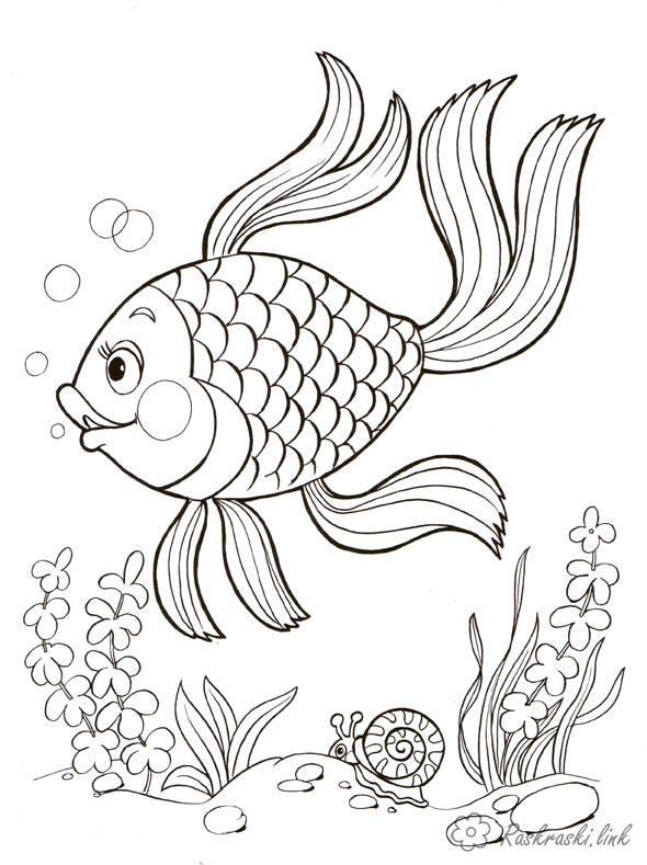 Розмальовки рибка Підводний світ, рибка, водорості, равлик