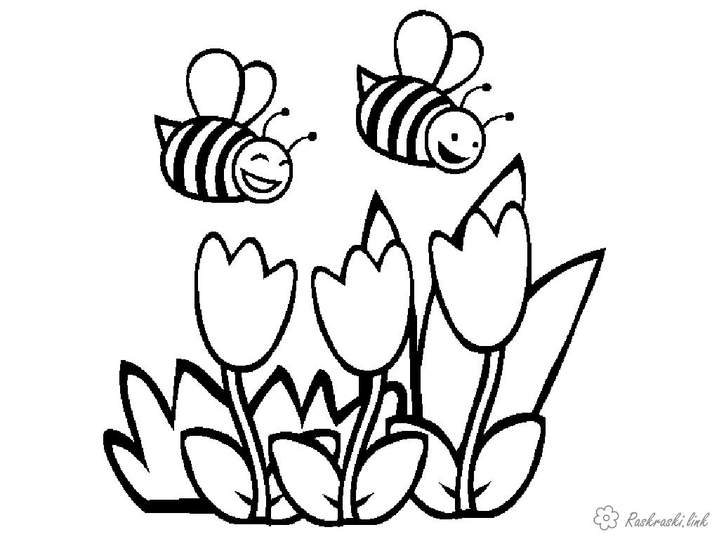 Coloring tulips Insects, bee, bee, flowers, tulip