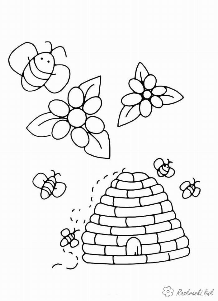 Раскраски природа Насекомые, пчелки, пчелка, улей, цветы