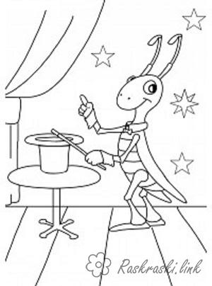 Coloring magician Insects, Grasshopper, magician, hat tricks