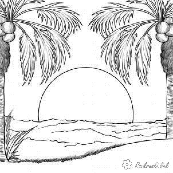 Раскраски пальмы Явления природы, закат, солнце, океан, море, пальмы